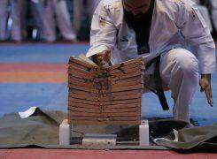 حضور ۱۷۷ تکواندوکار در رقابتهای قهرمانی آزاد هانمادانگ کشور