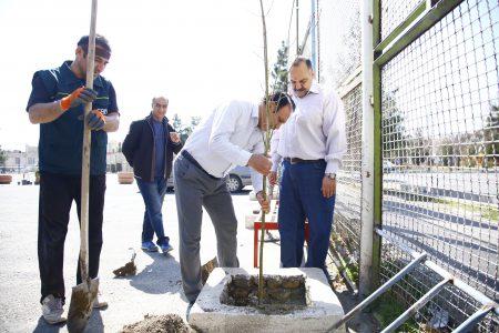 گزارش تصویری/کاشت نهال توسط مسولین و کادر اداری هیات به مناسبت  روز درختکاری