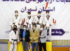 گزارش تصویری ۴/مسابقات آزاد قهرمانی هانمادانگ مردان استان